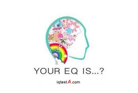 emotional intelligence test